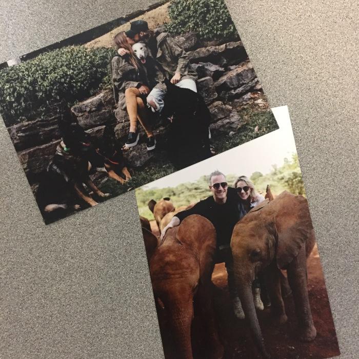 blog-fgl-xmas-cards